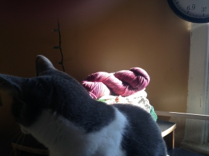 Bonus photo of Jemima trying to intercept the yarn.